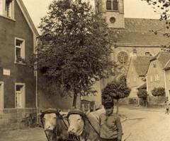 Sauer Nikolaus mit Fuhrwerk 1950