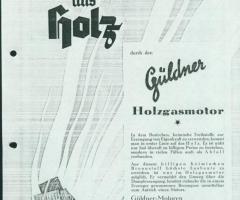 Gueldner_Motor_Holzvergaser_00