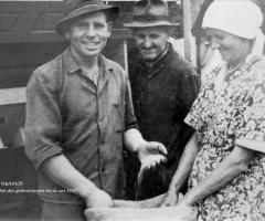 Kunkel Heinrich beim Dreschen 1950