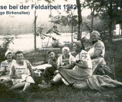 Feldarbeit 1942