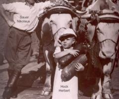 Trachtenfestzug 1952 - Sauer Nikolaus, Hock Herbert