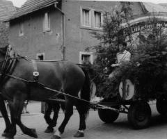 Festzug Schweinheim Marienstr