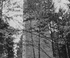 Aussichtsturm Stengerts